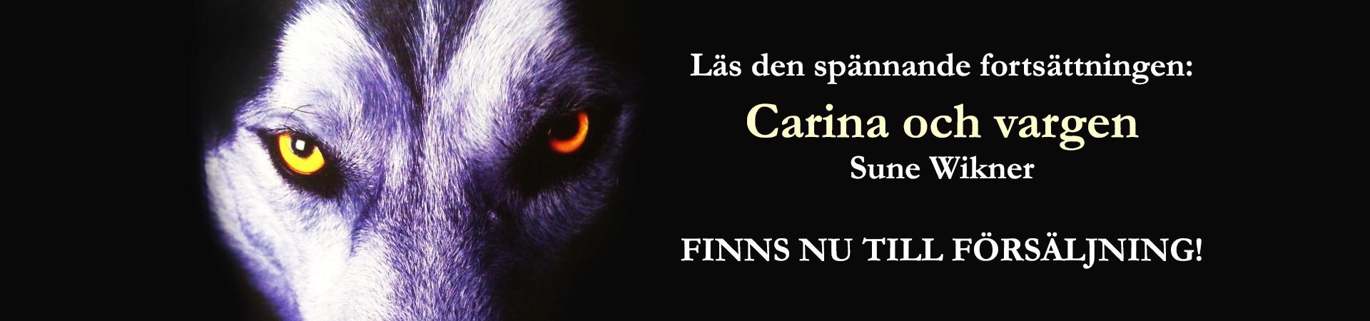 carina-vargen-augusta